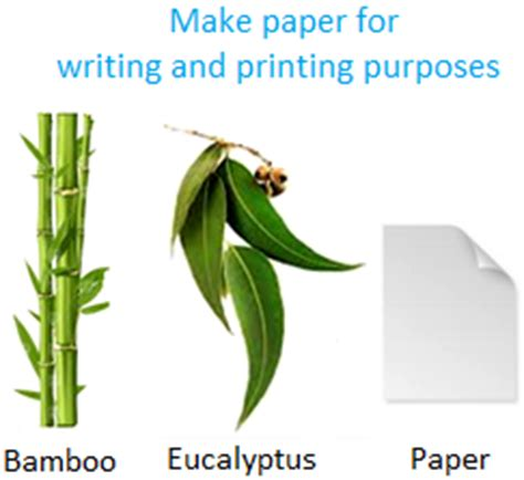 Learning to write scientific papers